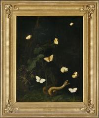 Herbs, Butterflies and a Serpent