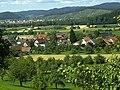 Heuweiler orchard - panoramio.jpg