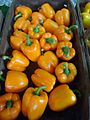 Hillview Farms red peppers 2.jpg
