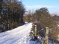 Hinds Lane - geograph.org.uk - 1671174.jpg