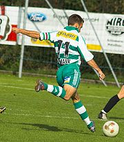 Steffen Hofmann, playing for Rapid Wien
