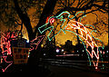 Holiday Zoo Lights (8286793236).jpg