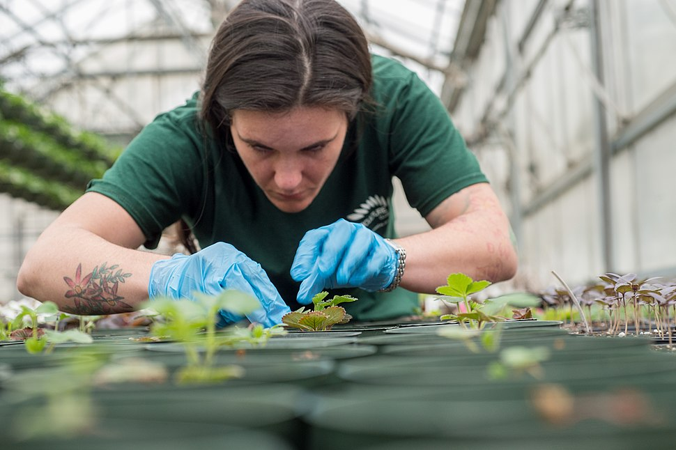 Horticulturist Amy Boul by Lance Cheung