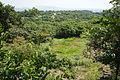 Hyogo prefectural Kabutoyama Forest Park08n4592.jpg