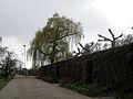 IMG 1292-Hoeschpark.JPG