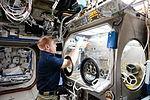 ISS-47 Tim Kopra configures the Microgravity Science Glovebox in the Destiny lab.jpg