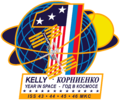 ISS Yearlong mission patch.png