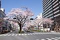 Ibaraki Prefectural Route-293 12.jpg