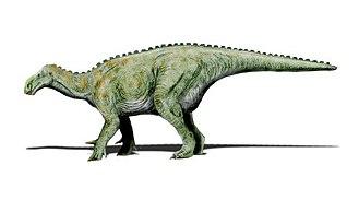 1825 in paleontology - Iguanodon