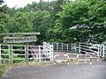 Iida kamisato matsuka cycling road.JPG