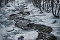 Il torrente Cairasca gelato.jpg