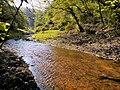 Il torrente Cremera alla Valle del Sorbo.jpg