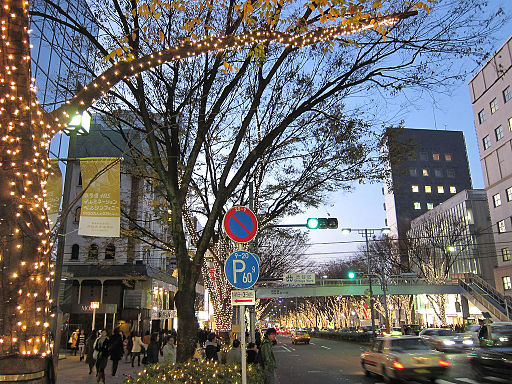 Illumination-in-Omotesando-2009-01