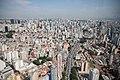Imagens da Cidade de São Paulo e Zoológico da Capital Paulista. (47480340391).jpg