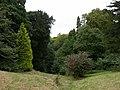 In the Wild Garden - geograph.org.uk - 31761.jpg
