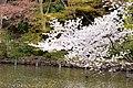 Inokashira Park 2009-04-05 (3446860534).jpg