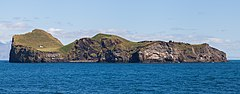 Isla Elliðaey, Islas Vestman, Suðurland, Islandia, 2014-08-17, DD 106.JPG
