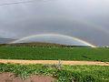 Israeli-Police-Facebook--Rainbow-01.jpg