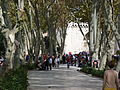 Istambul - 2014.10.23 (6).JPG