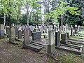 Jüdischer Friedhof Köln-Bocklemünd - Gräberfelder (01).jpg