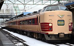 JR East 189 on Myoko service at Naoetsu Station 20141221.jpg