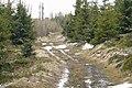 Jagodna trail.JPG