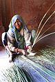 Jaipur, India (344947685).jpg
