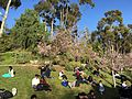 Japanese Friendship Garden (Balboa Park, San Diego) 6 2016-05-14.jpg