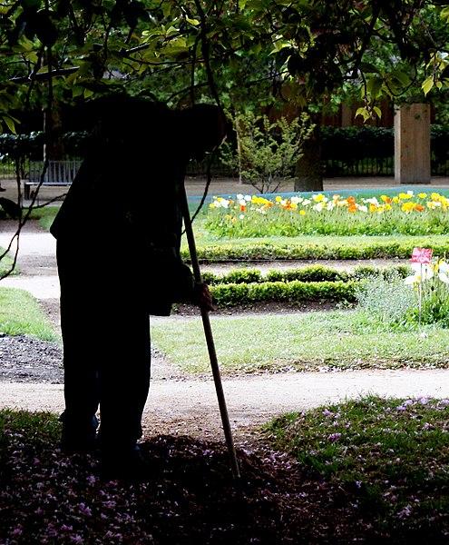 File jardinier du jardin des plantesplantes wikimedia commons for Jardin de jardiniers