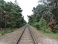 Jastarnia, Railway to Hel - panoramio.jpg