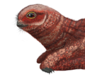 Jeholopterus reconstruction.png