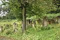 Jewish Cemetery Staryi Sambir 2008 02.jpg