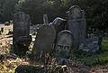Jewish cemetery Otwock Karczew Anielin IMGP6725.jpg