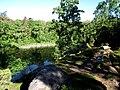 Jeziorko Ankermyr - panoramio (2).jpg