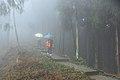 Jiulong mountain - panoramio.jpg