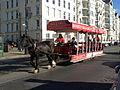 John pulls horse tram 36.JPG