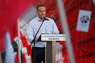 Péter Juhász (politician)