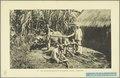KITLV - 37402 - Demmeni, J. - Tulp, De - Haarlem - Minangkabau cane mill - 1911.tif