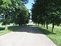 Kašonys, Lithuania - panoramio.jpg