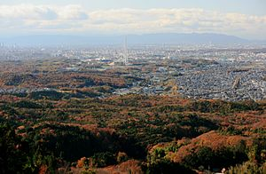 Kaisho Forest and Nagoya.jpg