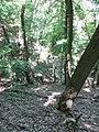 Kaniv Nature Reserve (May 2018) 87.jpg