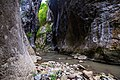 Kanjon Cediljka 3.jpg