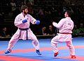 Karate WM 2014 881.JPG