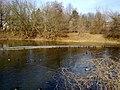 Karower Fischteiche - panoramio.jpg
