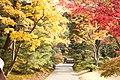 Katsura Rikyu (3264641838).jpg