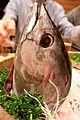 Katsuwonus pelamis, eaten - Flickr - odako1.jpg