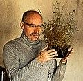 Kenraiz & Lamarckia aurea.jpg