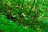 Kickapoo Valley Reserve.jpg