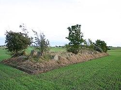 King Humbles Grave Langeland.jpg