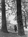 Kislány portré 1955-ben a Kós Károly sétány mellett. Fortepan 7473.jpg